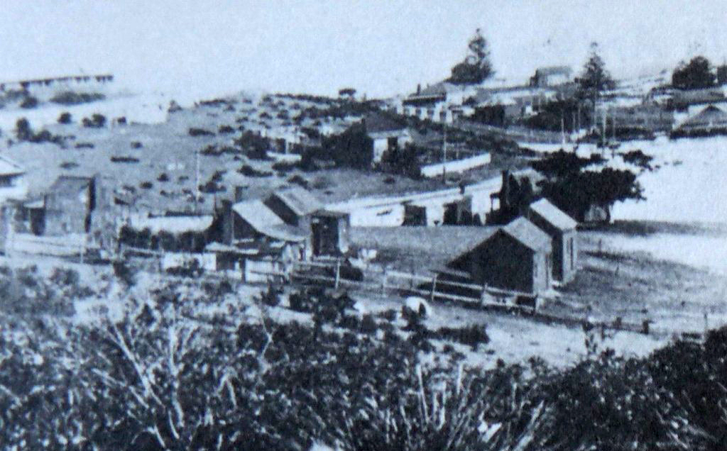 207-La Perouse Reserve 1930s.lightbox